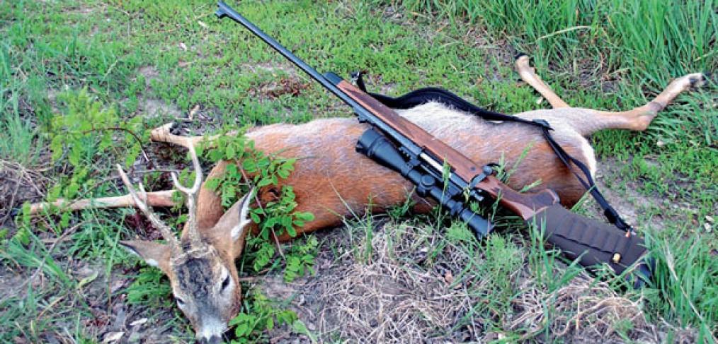 браконьеры охота и рыбалка